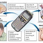 Jauhkan Radiasi Handphone Sesaat Sebelum Tidur Untuk Mencegah Gangguan Insomnia